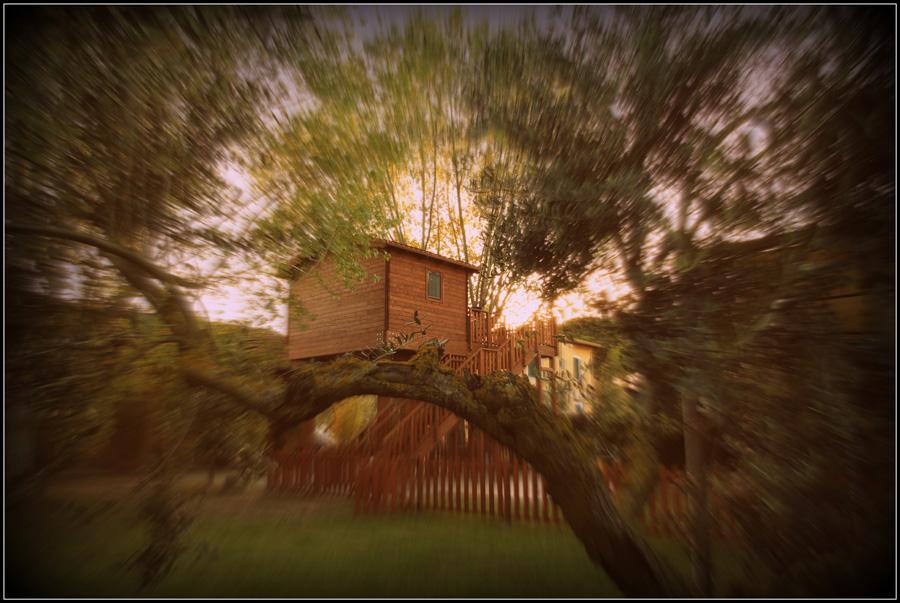 Emozione3, la casa sull\'albero diventa cofanetto - Webitmag - Web ...