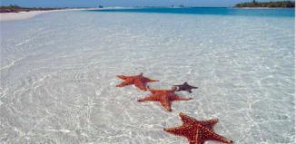 Tra le proposte di fine anno, Speedvacanze.it propone il Capodanno a Cuba
