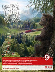 Campagna16_soggetto orso