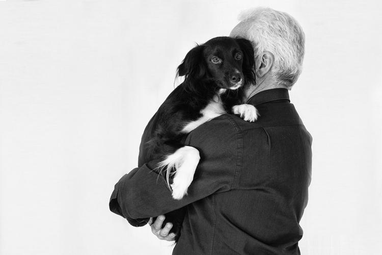 Svolta nel trasporto aereo: i cani possono viaggiare in cabina