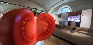 Il Museo del Pomodoro