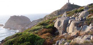 Carloforte , Sardegna
