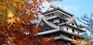 Foliage in Giappone. Foto: JNTO