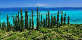 Isola dei Pini, Nuova Caledonia