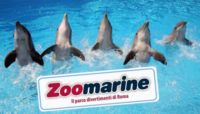 zoomarine attrazioni